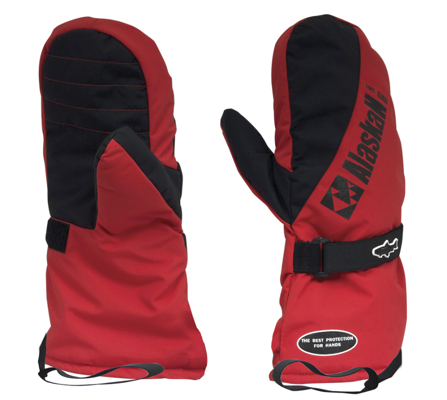 Insulated Mittens New Polar